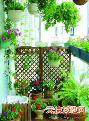 阳台设计 变成温馨小花房