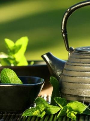古香草茶减肥茶减肥不反弹又达到美容功效