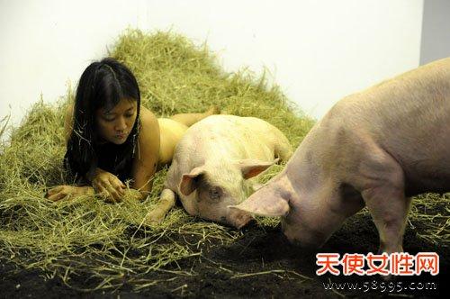 女行为艺术家玩另类:与猪裸睡 呼吁人们理解世界