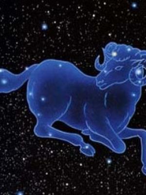 预测2012职场运气比较好的星座