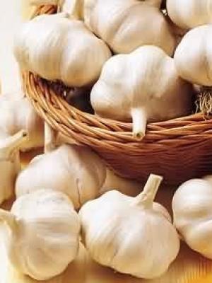 生吃大蒜能防癌 看看五类人不宜吃